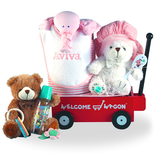 Baby Shower Welcome Wagon Gift for a Baby Girl