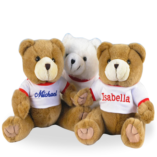 Your First Best Friend, the Teaddy Bear Personalized Gift