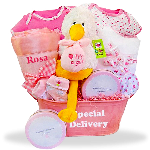 Goodies for the Baby Girl Plush Stork  It's a Girl!