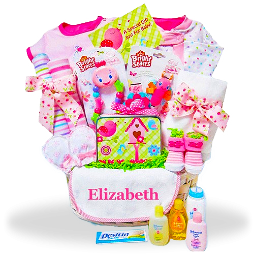 Send new baby gift baskets newborn baby baskets for boys and new baby girl personalized gift basket in the pink negle Choice Image