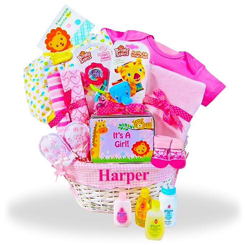 New Baby Girl Gift Basket Fun Safari