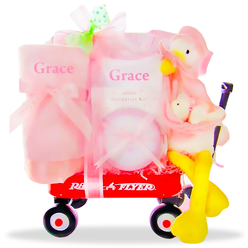 Happy Stork's Special Delivery Girl Personalized Gift Basket