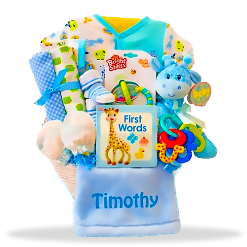 New Baby Gift Basket Usa : Baby blue giraffe s all boy gift basket shipping to usa
