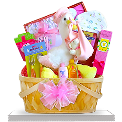 Grand Plush Stork's Gorgeous Baby Girl Gift Basket