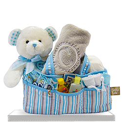 Diaper Caddy and Teddy Plush Bear for Baby Boy Gift Basket