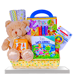 Reading with a Plush Bear Baby Einstein Gift Basket