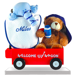 Welcome Wagon Baby Shower Gift for a Baby Boy