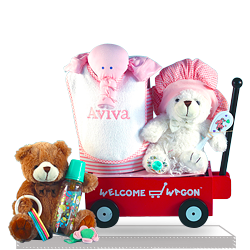 Looking for Baby Shower for a Baby Girl Welcome Wagon Gift