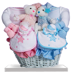 Plush Bearsfor for Baby Twins Gift Basket