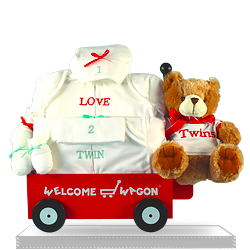 Welcome Wagon Gift Set for Twins