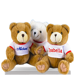 First Plush Teaddy Bear Personalized Gift Basket