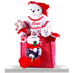 Baby's First Christmas Tote and a Plush Bear Baby Gift