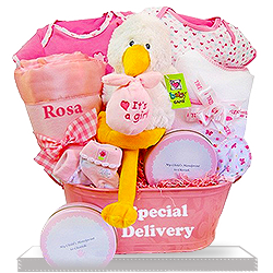 It's a Girl Goodies for the Baby Girl Plush Stork Gift