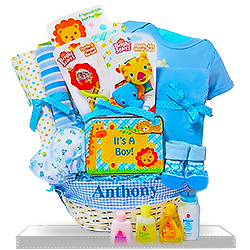 Safari Friends for New Baby Boys Gift Basket