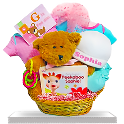 Baby Bear's Welcome Gift Basket for Girl