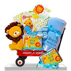 Baby Boy's Wildlife Wagon with Plush Lion Gift Basket