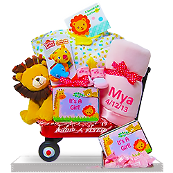 A Girl's Wildlife Radio Wagon Gift Basket