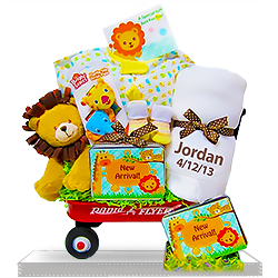 The Tiny Plush Lion's Wildlife Gift Basket