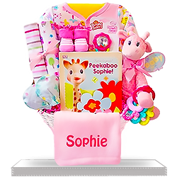Newborn Baby Girl's All Pink Giraffe Gift Basket