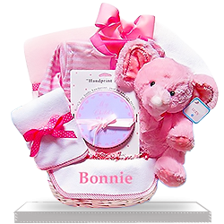 Personalized Pink Minky Soft Elephant Gift Basket