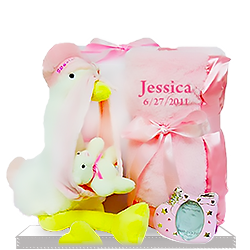 The Personalized Stork that Stayed for Baby Girl's Gift Blanket
