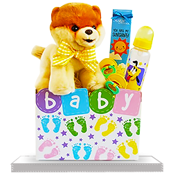 Best Ever Baby Box With Boo Dog