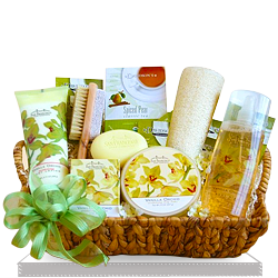 Exquisite Spa Orchid Gift Basket
