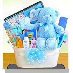 Order Baby Boy Starter Gift Basket
