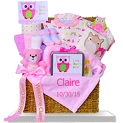 Looking for An Adorable Owl Gift Trunk for Baby Girls