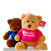 Big Brother/Big Sister Teddy Bear