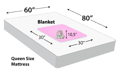 Personalized Blanket Dimensions (30x30)